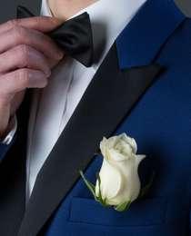 rose boutonnière
